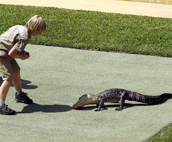 10-years-old-boy-faces-off-against-giant-crocodile4