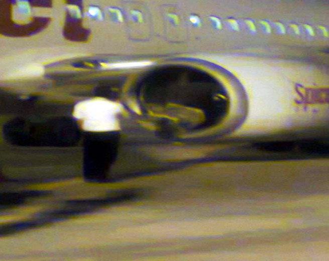 flight hits buffalo1