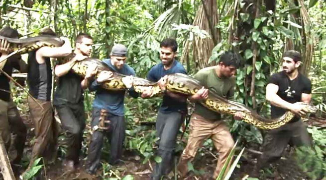paul-eaten-alive-by-anaconda3