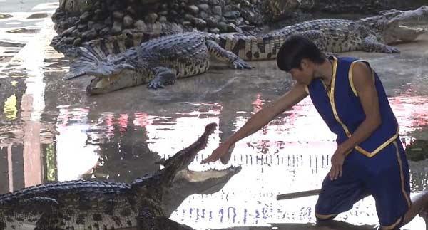 head-in-crocodiles-mouth3