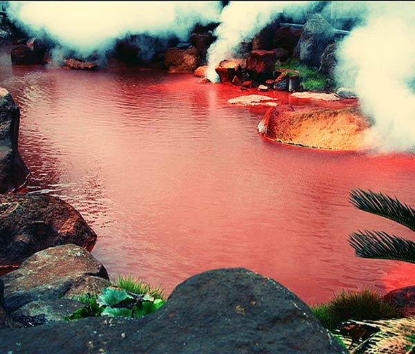 bloody-pond-japan4