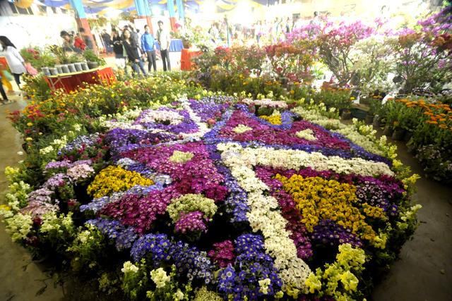 Flower Exibition  (2)