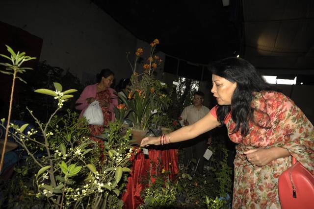 Flower Exibition  (4)