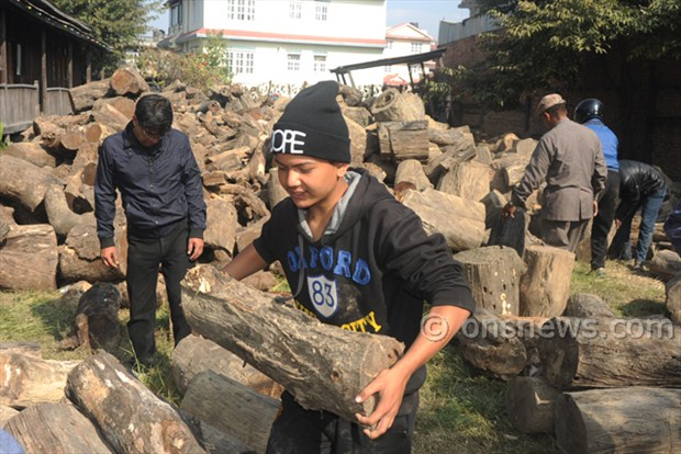 Line for timber in ktm (5)